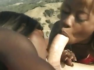 African, Big Black Cock, Big Cock, Black, Dick, Group Sex, Interracial, Nature, Outdoor, White,