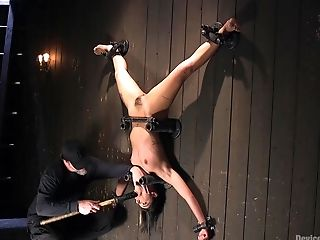 BDSM, Bondage, Fetish, Rough, Submissive,