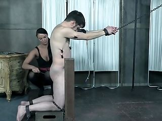 BDSM, Bondage, Fetish, Slap, Spanking, Submissive,
