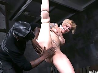 BDSM, Beauty, Black, Blonde, Bound, Brutal, Cute, Hardcore, Horny, MILF,