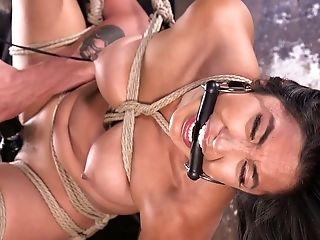BDSM, Bondage, Hogtied, Rough,