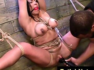 BDSM, Big Cock, Black, Blowjob, Bobcat, Bold, Bondage, Bound, Cougar, Couple,